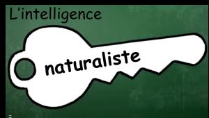 8cles_naturaliste